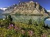 Free Nature Wallpaper : Bow Lake - Alberta, Canada