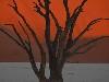 Free Nature Wallpaper : Desert