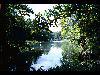 Free Nature Wallpaper : Illinois River