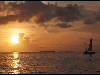 Free Nature Wallpaper : Key West - Sunset