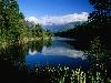 Free Nature Wallpaper : Lake Mathieson - New Zealand