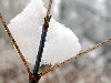 Free Nature Wallpaper : Winter - Ice