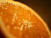 Free Nature Wallpaper : Orange
