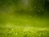 Free Nature Wallpaper : Rain