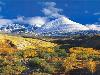 Free Nature Wallpaper : Spring Mountains
