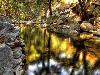Free Nature Wallpaper : Stream