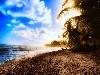 Free Nature Wallpaper : Sunbay - Puerto Rico