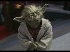 Free Star Wars Wallpaper : Master Yoda