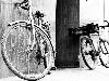 Free Vehicles Wallpaper : Bikes