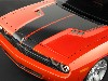 Free Vehicles Wallpaper : Dodge Challenger
