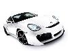 Free Vehicles Wallpaper : Porsche Cayman