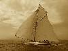 Free Vehicles Wallpaper : Sail Boat